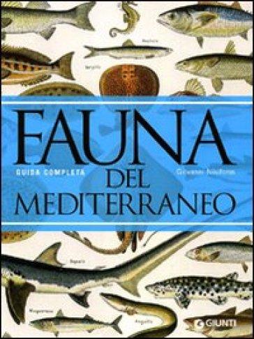 Fauna del Mediterraneo - Giovanni Nikiforos | Rochesterscifianimecon.com