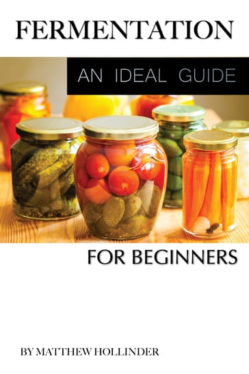 Fermentation: An Ideal Guide for Beginners