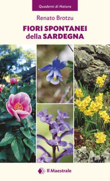 Fiori spontanei della Sardegna. Ediz. illustrata - Renato Brotzu |