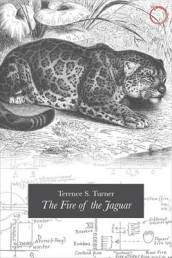 Fire of the Jaguar
