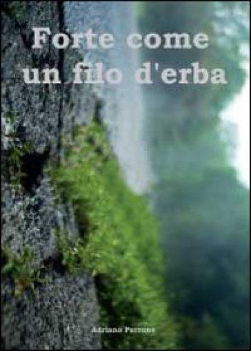 Forte come un filo d'erba - Adriano Perrone | Kritjur.org