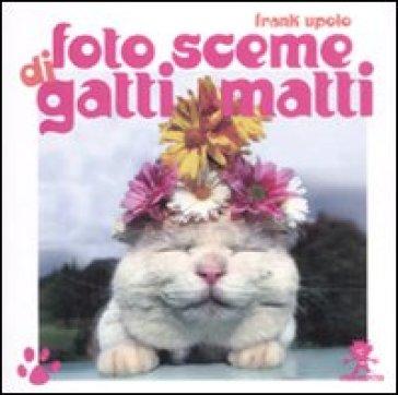 Foto sceme di gatti matti - Frank Upolo   Thecosgala.com
