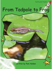From Tadpole to Frog Big Book Edition