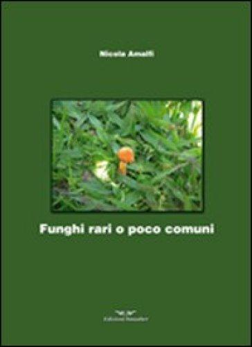 Funghi rari o poco comuni - Nicola Amalfi |