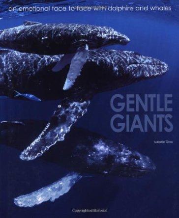 Gentle giants. Ediz. illustrata inglese - Isabelle Groc |
