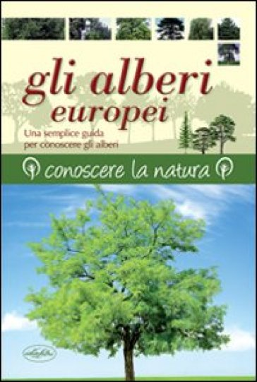 Gli alberi europei - Keith Rushfort | Rochesterscifianimecon.com
