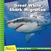 Great White Shark Migration