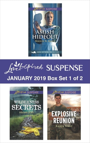 Harlequin Love Inspired Suspense January 2019 - Box Set 1 of 2