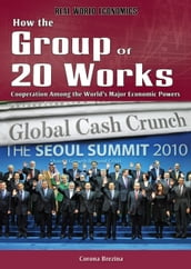 How the Group of 20 Works