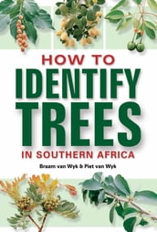 How to Identify Trees