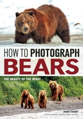 How to Photograph Bears