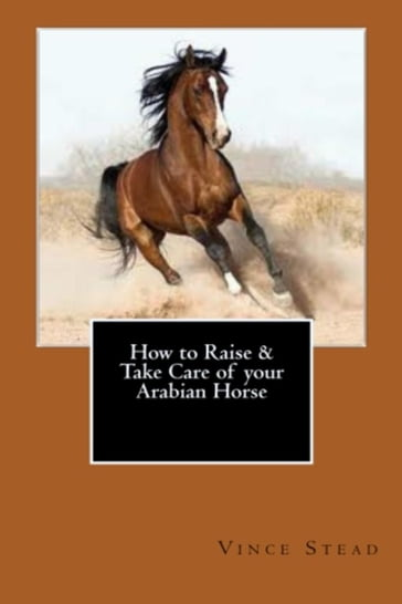 How to Raise & Take Care of your Arabian Horse
