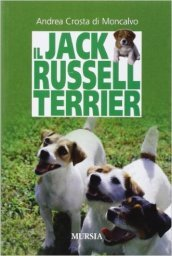 Il Jack Russell terrier