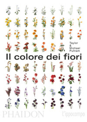 Il colore dei fiori - Michael Putnam  