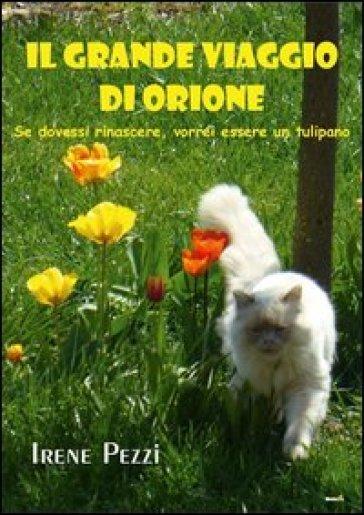 Il grande viaggio di Orione - Irene Pezzi | Kritjur.org