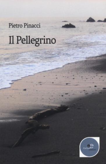 Il pellegrino - Pietro Pinacci | Rochesterscifianimecon.com