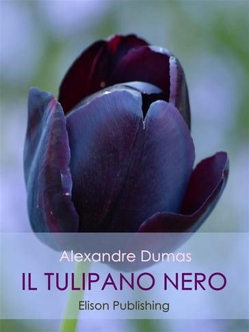 Il tulipano nero la stella della senna memorial box struzzostore