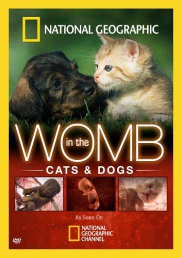 In the womb:cats and dogs