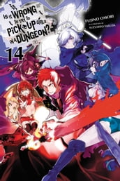 Is It Wrong to Try to Pick Up Girls in a Dungeon?, Vol. 14 (light novel)