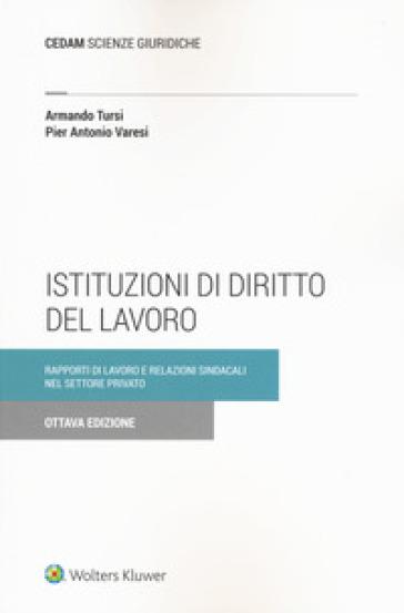 Istituzioni di diritto del lavoro. Rapporti di lavoro e relazioni sindacali nel settore privato - Armando Tursi |