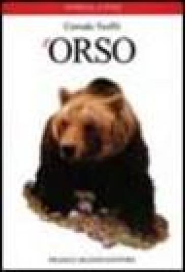 L'orso - Corrado Teofili | Rochesterscifianimecon.com
