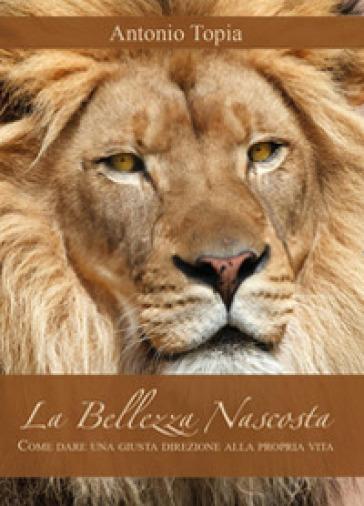 La bellezza nascosta - Antonio Topia | Rochesterscifianimecon.com
