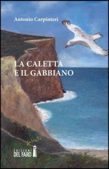 La caletta e il gabbiano - Antonio Carpinteri   Jonathanterrington.com