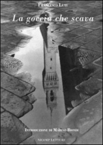 La goccia che scava - Francesco Luti |