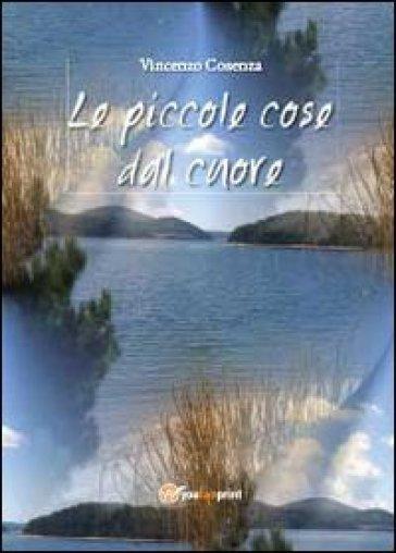 Le piccole cose dal cuore - Vincenzo Cosenza  