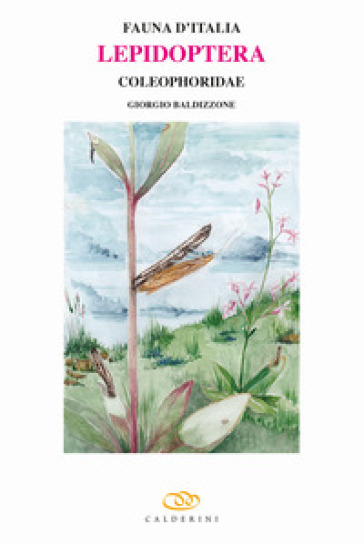 Lepidoptera. Coleophoridae - Giorgio Baldizzone  