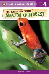 Life in the Amazon Rainforest