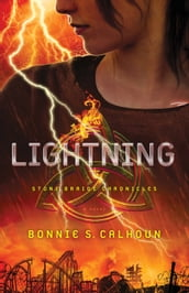 Lightning (Stone Braide Chronicles Book #2)