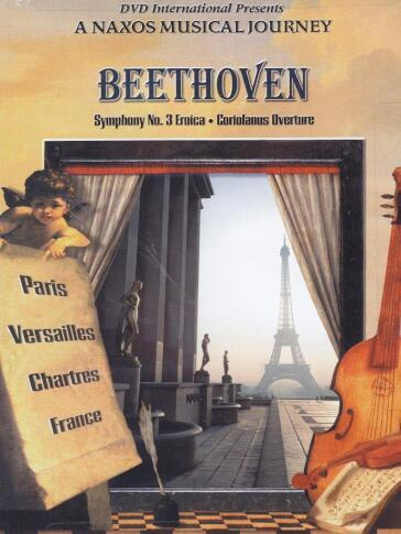 an analysis of the eroica symphony by ludwig van beethoven Symphony no 3 in e-flat major, opus 55 (also italian sinfonia eroica, heroic symphony) is a structurally rigorous composition of great emotional depth, which marked the beginning of the creative middle-period of the composer ludwig van beethoven.