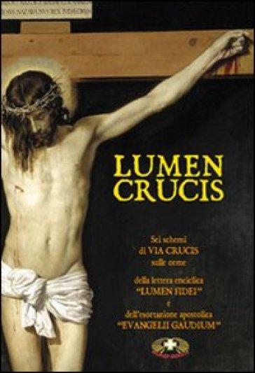 Lumen crucis. Sei schemi di Via Crucis sulle orme della lettera enciclica «Lumen Fidei» e dell'esortazione apostolica «Evangelii Gaudium»