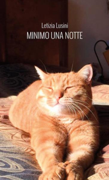 Minimo una notte - Letizia Lusini |
