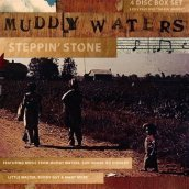 Muddy waters - stepping..