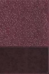 NRSV, Thinline Reference Bible, Leathersoft, Burgundy, Thumb Indexed, Comfort Print