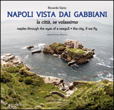 Napoli vista dai gabbiani. La città se volassimo - Riccardo Siano |