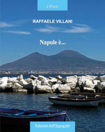 Napule è... - Raffaele Villani  