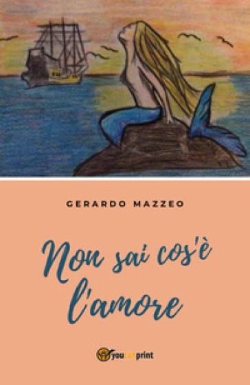 Non sai cos'è l'amore - Gerardo Mazzeo  