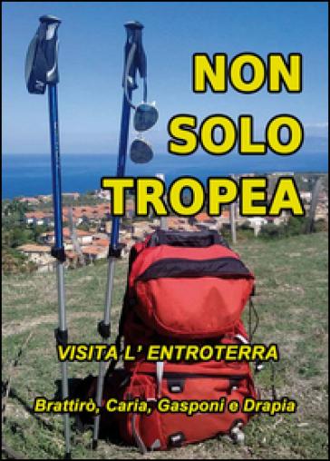 Non solo Tropea... Visita l'entroterra (Brattirò, Caria, Gasponi, Drapia) - M. Vallone |