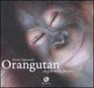 Orangutan. Angeli della foresta. Ediz. illustrata - Nicola Tignonsini |
