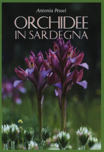 Orchidee in Sardegna. Ediz. illustrata - Antonia Pessei |