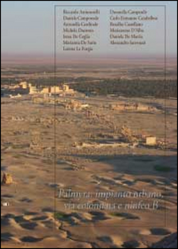 Palmira: impianto urbano, via colonnata e ninfeo B