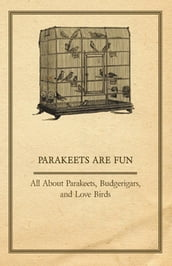 Parakeets are Fun - All About Parakeets, Budgerigars, and Love Birds