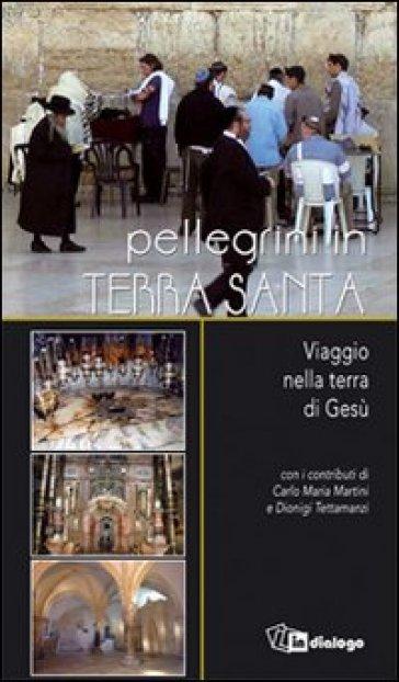 Pellegrini in Terra Santa. Viaggio nella terra di Gesù - Romeo Maggioni |