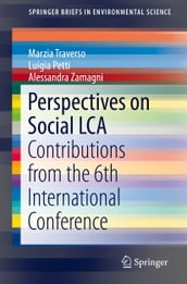 Perspectives on Social LCA