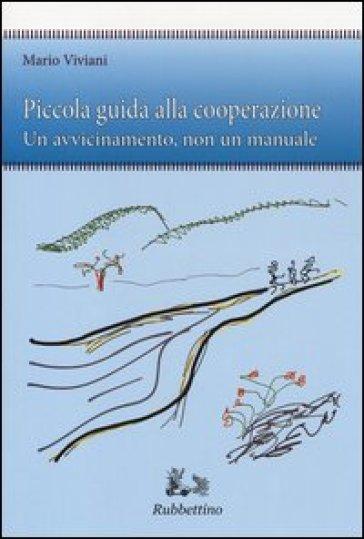 Piccola guida alla cooperazione. Un avvicinamento, non un manuale - Mario Viviani | Rochesterscifianimecon.com