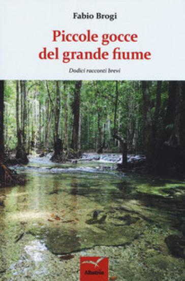 Piccole gocce del grande fiume. Dodici racconti brevi - Fabio Brogi  