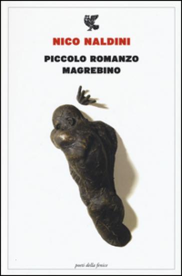 Piccolo romanzo magrebino - Nico Naldini pdf epub